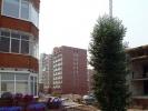 altayskaya24usl~1.jpg
